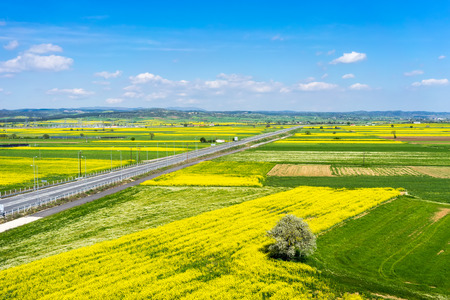 Aerial view of road passing through a rural landscape with blooming rape in northern Greece photo