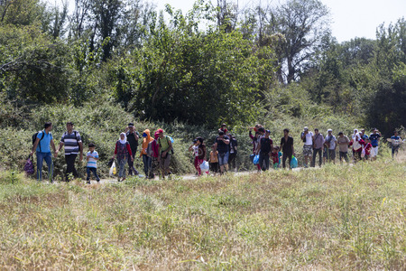 Idomeni, Greece - August 19 , 2015: Hundreds of immigrants are in a wait at the border between Greece and FYROM waiting for the right time to continue their journey from unguarded passages Zdjęcie Seryjne - 44215088