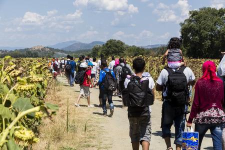 Idomeni, Grecia - 19 de agosto de 2015: Cientos de inmigrantes se encuentran en una espera en la frontera entre Grecia y la ARYM esperando el momento adecuado para continuar su viaje desde pasajes sin vigilancia Foto de archivo - 44215110
