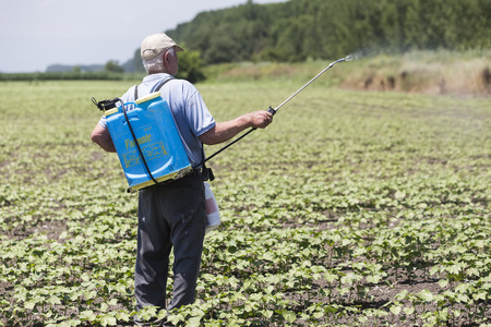 monoculture: Thessaloniki, Greece - June 21, 2015: Farmer spraying cotton field in Greece. Editorial