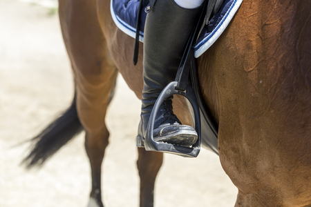 gelding: Close up of the stirrup on the horse during competition matches riding round obstacles