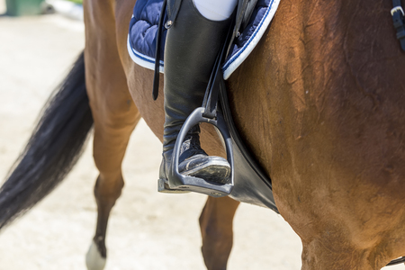 dapple grey: Close up of the stirrup on the horse during competition matches riding round obstacles