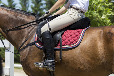 stirrup: Thessloniki, Greece, June 14, 2015: Close up of the stirrup on the horse during competition matches riding round obstacles