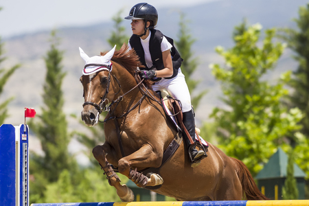 gelding: Thessloniki, Greece, June 14, 2015: Unknown rider on a horse during competition matches riding round obstacles