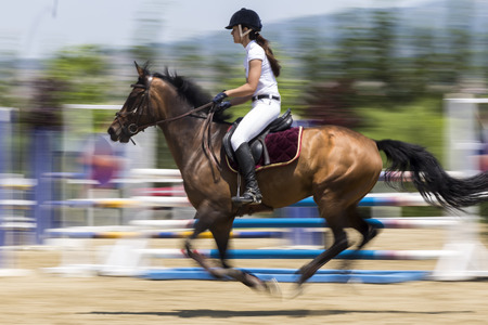 dapple grey: Thessloniki, Greece, June 14, 2015: Unknown rider on a horse during competition matches riding round obstacles