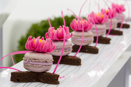 View of beautiful pastry, small colorful sweet cakes