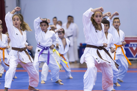 Thessaloniki, Greece, Oktober18 2015: Demonstration by men and women faculties of Japanese traditional martial arts, judo, karate, aikido, kendo Imagens - 46841326