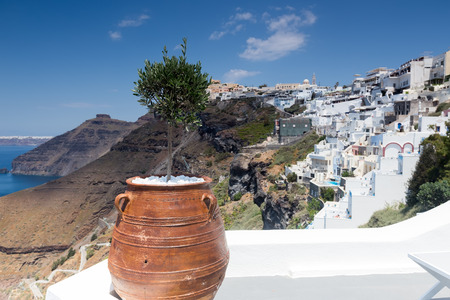 greek pot: Flower pot in front of the ocean in Santorini