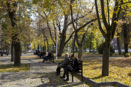 humid: Krasnodar, Russia - November 5, 2015: View of a park in Krasnodar, Russia. Under the Koppen climate classification, Krasnodar has a humid subtropical climate.