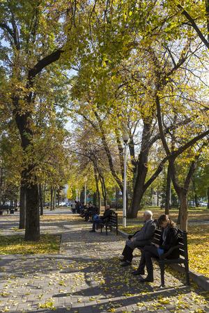 krasnodar: Krasnodar, Russia - November 5, 2015: View of a park in Krasnodar, Russia. Under the Koppen climate classification, Krasnodar has a humid subtropical climate.