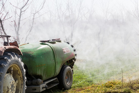 fungicide: Veria, Greece - March 19, 2016: Farmer with tractor using a air blast sprayer with a chemical insecticide or fungicide in the orchard of peach trees in northern Greece