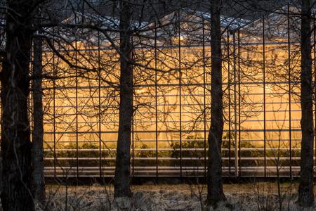 Geothermal greenhouses in Northern Iceland