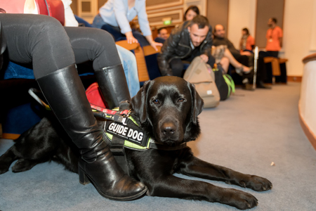 Thessaloniki, Greece - March 9, 2018: blind man with guide dog sitting in the cinema during a special screening for blinds at Zannas cinema