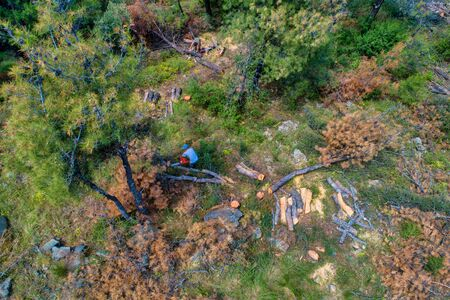 Aerial view of deforestation coniferous trees in the suburban forest of Thessaloniki 版權商用圖片 - 129978311