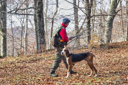hunter with weapon and hunting dog chasing in the forest 版權商用圖片