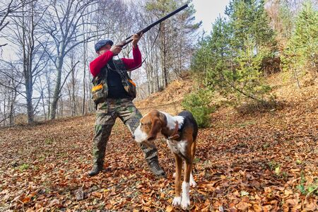 hunter with weapon and hunting dog chasing in the forest