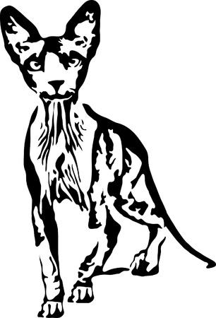 elvonult: illusztráció Szfinx félreeső