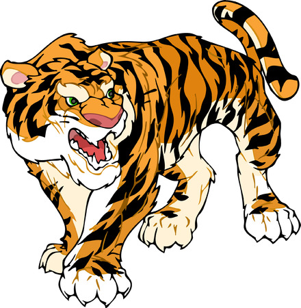 Arge yellow tiger goes and bares his teeth