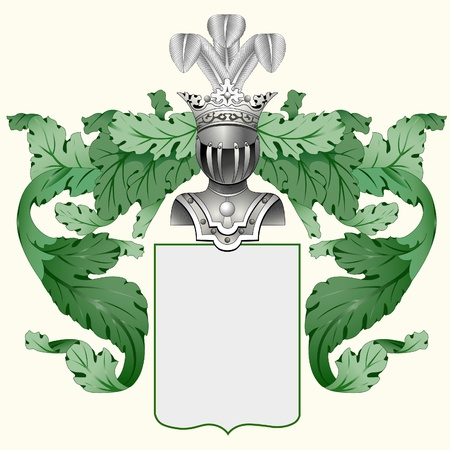 escudo de armas: Ilustración de un escudo heráldico o un escudo de armas familiar