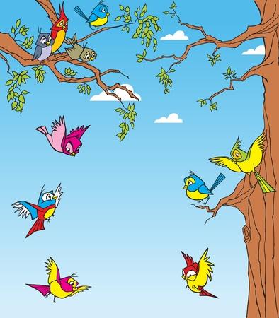 �rboles con pajaros: Un cierto n�mero de especies de aves que revolotean entre los �rboles Vectores
