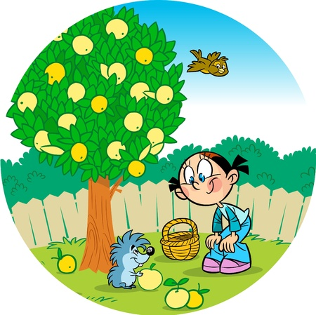 The illustration shows a girl who works in the garden. Little funny hedgehog helps her pick apples Stock Vector - 15447063