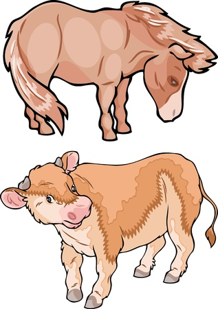 The illustration shows the farm animals. Small calf and ponies on separate layers. Stock Vector - 16079348