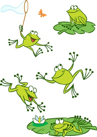 anuran: The illustration shows of some cartoon frogs  in various poses, as well as insects and water lilies