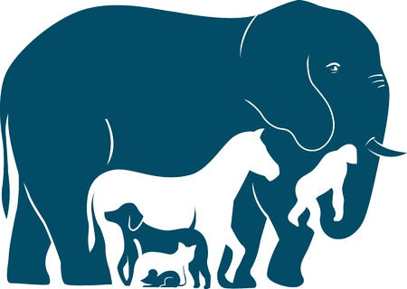 big cat:  The illustration shows several mammal species as they increase in weight  Illustration done in the style silhouette Illustration