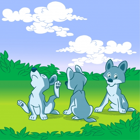 The illustration shows a brood small wolfling  They play in the meadow  Illustration done in cartoon style, on separate layers  Vector