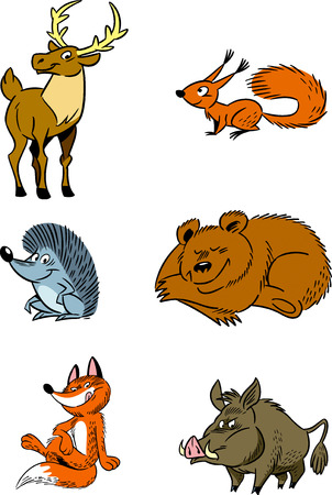 The illustration shows some species of wild forest animals isolated on a white background  Illustration done in cartoon style, on separate layers
