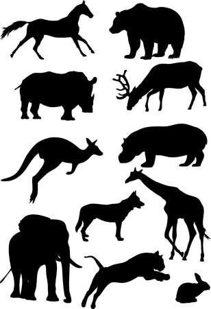 The illustration shows animals, some species of wild mammals  Illustration done in the style of contour drawing, isolated on white background, in separate layers  Vector