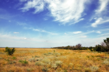 the steppe with dry yellow grass on a background of blue sky with clouds