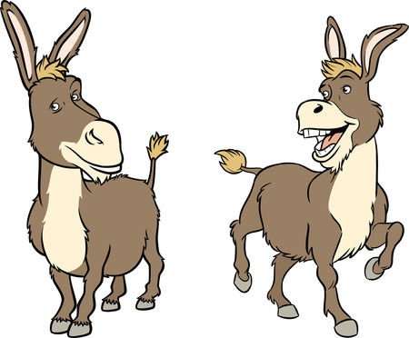 The illustration shows a funny cartoon donkey in two poses  Vector