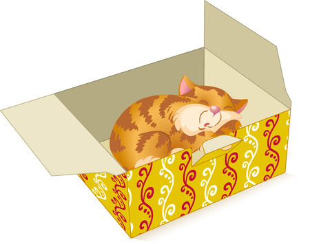 cat open:  The illustration shows a sleepy kitten in color box  Illustration done in cartoon style isolated on white background