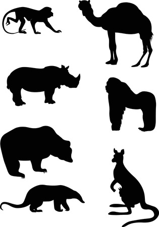 anteater:  The illustration shows animals, some species of wild mammals  Illustration done in the style of contour drawing, isolated on white background, in separate layers  Illustration