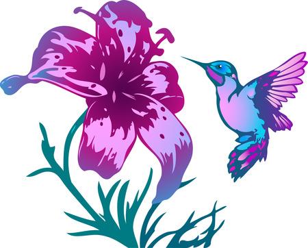 L'illustration montre le colibri près d'une belle fleurs rose. Illustration faite sur des calques séparés. Vecteurs