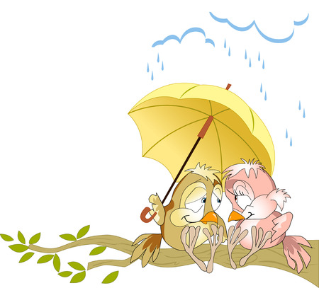 yellow umbrella: The illustration shows a couple in love birds sitting on a branch under a yellow umbrella. Illustration done as a funny card, in cartoon style, on separate layers.