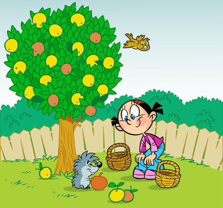 The illustration shows a girl who works in the garden. Little funny hedgehog helps her pick apples. Illustration done in cartoon style. Illustration