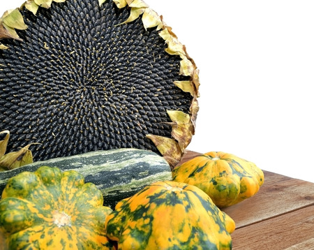 marrow squash: The photo shows large ripe sunflower with seeds inside and several colorful marrow squash on the wooden table, isolated on white background. Stock Photo