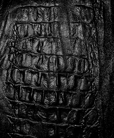 origen animal: La foto muestra el fondo negro original con textura y patrones de piel natural de origen animal