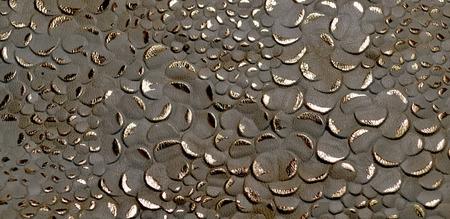 origen animal: La foto muestra la textura negro original con el patrón oro de la piel natural de origen animal Foto de archivo