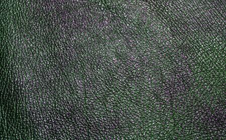 origen animal: La foto muestra el fondo con textura del color de la piel natural de origen animal