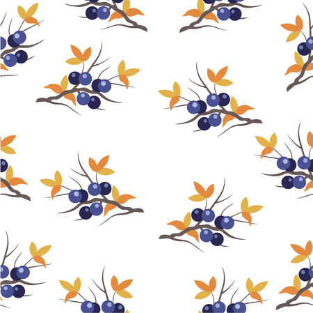 orange trees: seamless pattern with a sloe sprig on a white background