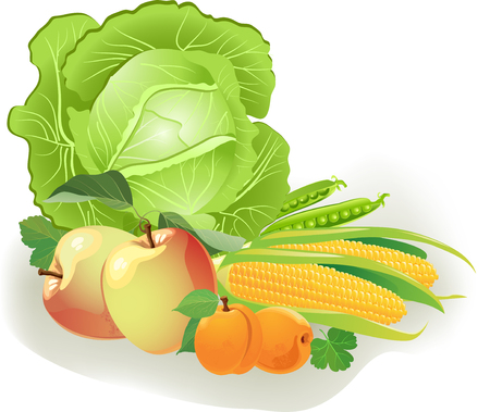 The illustration shows a set of different types of vegetables and fruits. Achieved isolated on white background, on separate layers. Illustration