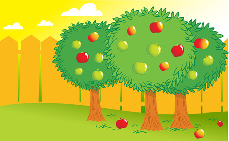 fruit stem: The illustration shows few apple trees in the garden behind the fence. Done in a cartoon style, on separate layers. Illustration