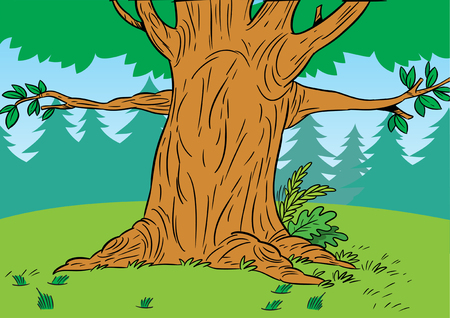 lawn grass: The illustration shows a portion of a large tree in a forest glade in a cartoon style Illustration