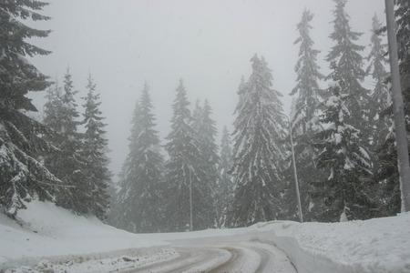 Winter road in winter mountain scene with snow, trees, winter resort Smolyan, Bulgaria, Rhodope Mountains. Road in mountain valley, winter fairy tale