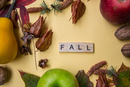 Text spelt with wooden letter tiles on pale yellow background, word FALL, autumn still life, lettering concept