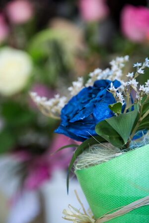 Beautiful blue rose, spayed with paint, close-up of a flower in a shop, selective focus, blooming bouquet with white decoration