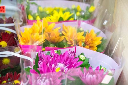Beautiful colorful chrisantemum in a flowershop, close-up, blooming bouquet decoration for present